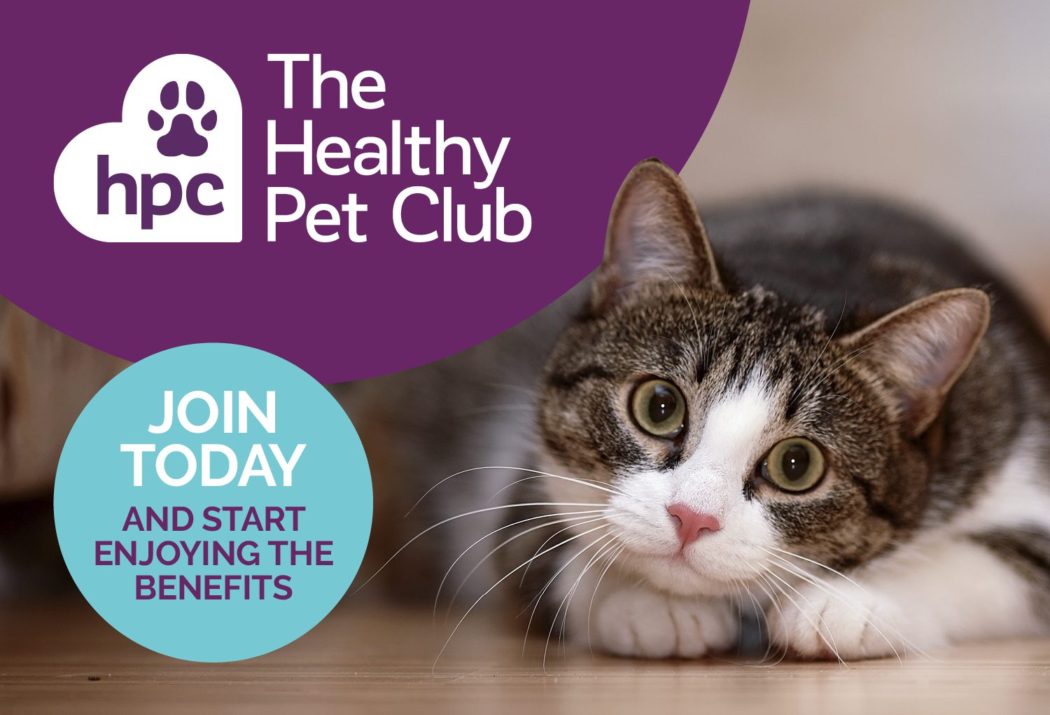 Sign up to The Healthy Pet Club today