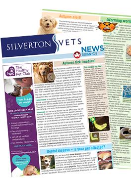 Silverton Autumn Newsletter 2021